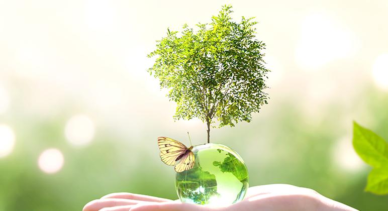 Hållbar Utveckling