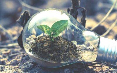 Sustainability Work